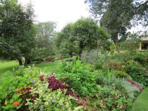 the grounds at Pakakuna Gardens